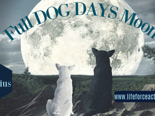 Full Dog Days Moon