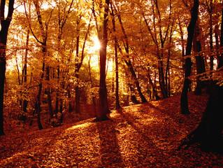 Autumn Blessings – September 21