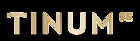 Tinum SE logo.png