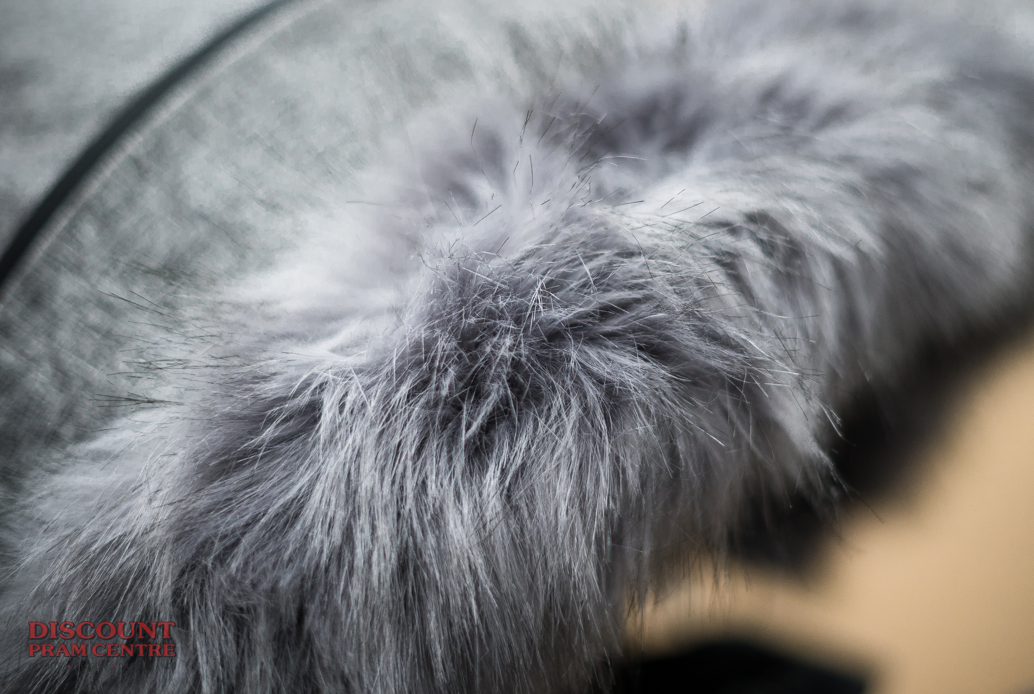 Wolf with Fur Exports -8