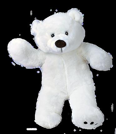Polar_Bear_grande.png