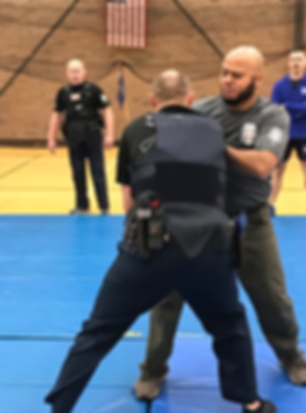 Police Subject control. Law Enforcement Defensive Tactics. MCOLES. Police knife fighting. Michigan.