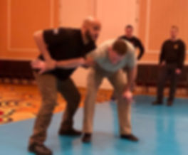 Police defensive tactics. Law enforcement subect control. Michgan. MCOLES