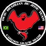 Carlson Gracie Miami | Buiu BJJ | Florida
