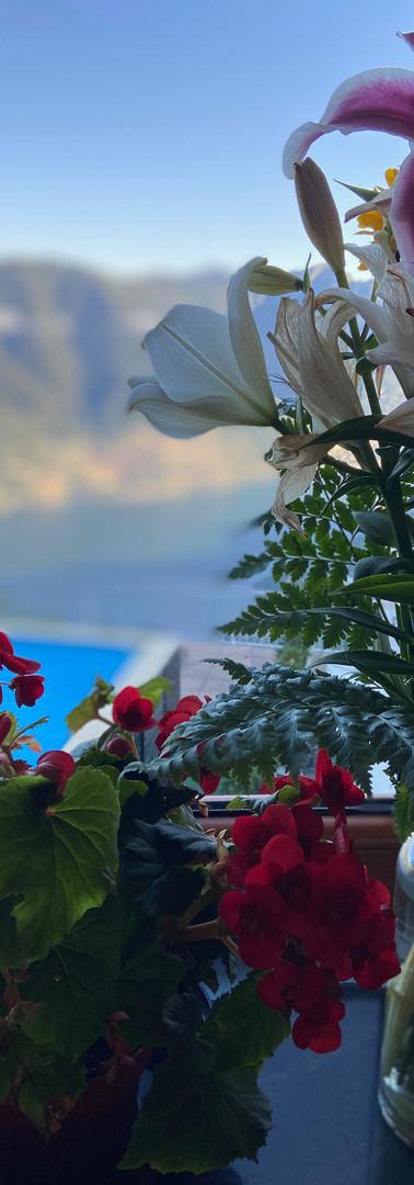 panoramafiori.jpg