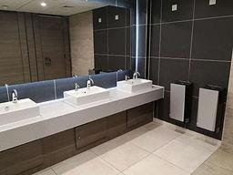 Washroom Mitsubishi Jet Towel.jpg