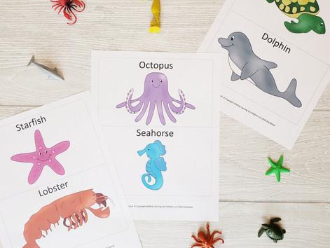 Sea Creatures Part 1