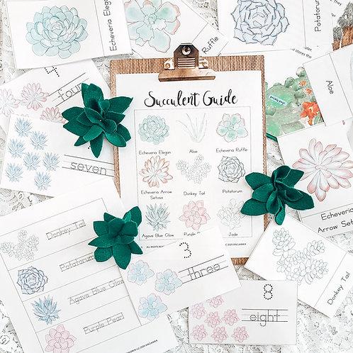 Succulent Plant Nature Study | Printables | Homeschool Resources | Succulents