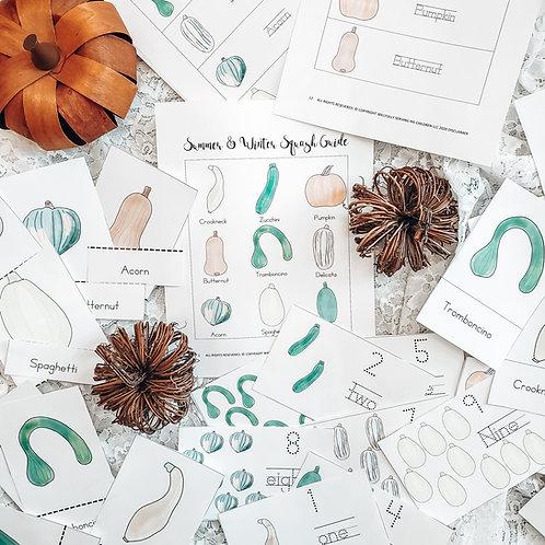 Squash Study   Garden Printables   Homeschool Resources   Pumpkin Study