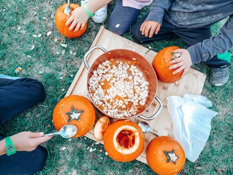 16 Fun Fall Outdoor Activities