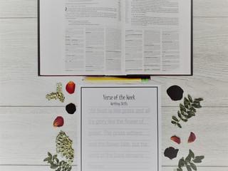 Scripture Memorization