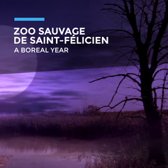 St-Félicien - Zoo Sauvage-AN.png