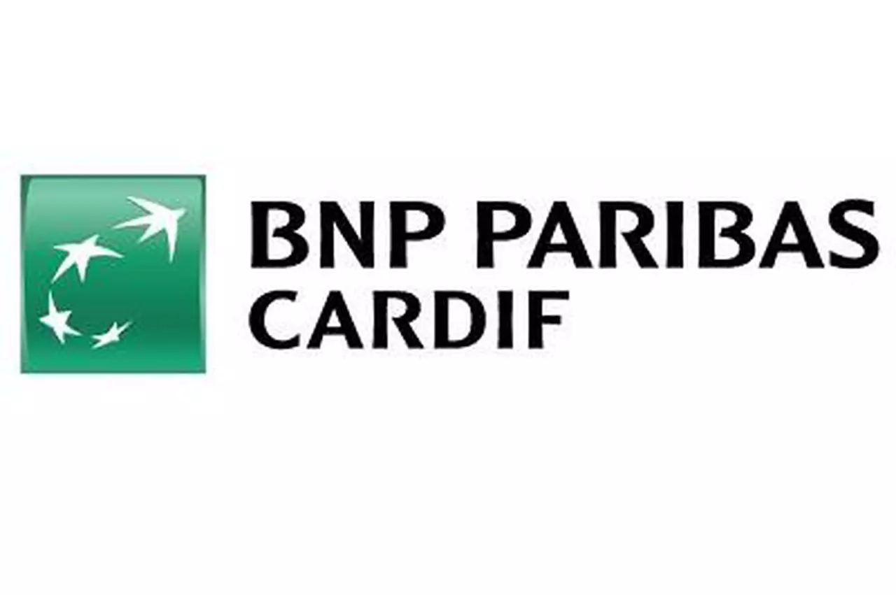 BNP.webp