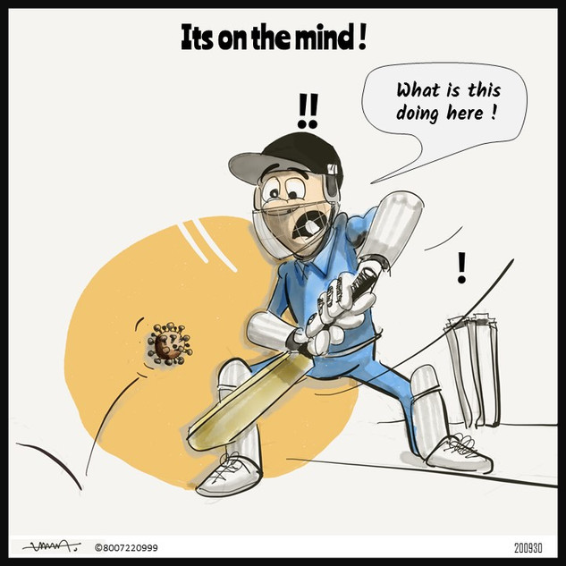 19.Cricket.jpg
