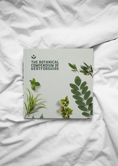 the BCOH Book Design