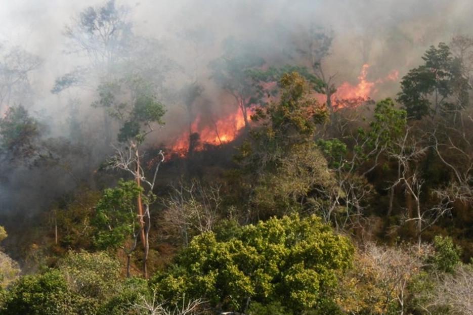 Ação voltada para técnicos dos municípios será nesta quinta-feira, em Biritiba Mirim, com parceria da Fundação Florestal. Região contabiliza mais de 300 focos de queimadas no primeiro semestre de 2019