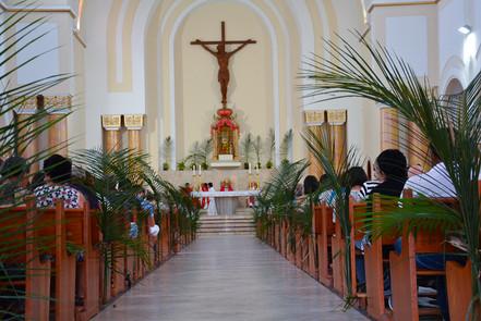 Celebração do Domingo de Ramos