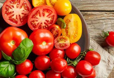 Tomato Cultivation| Health Benefits| Pest & Disease Control| Annual Profits| BestPractiz-Agri