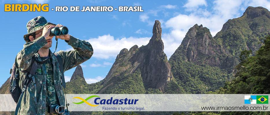 birding_rio_birdwatching_Brazil_1.jpg