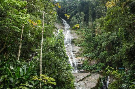 floresta-da-tijuca-0223.jpg