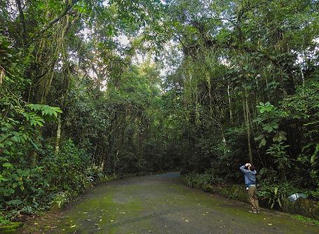 Parque Nacional da Serra dos Órgãos Guapimirim