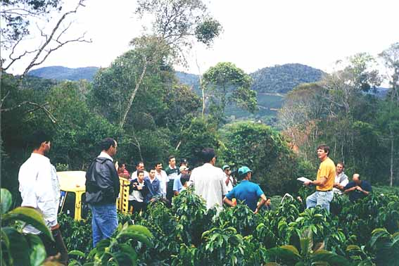 Cursos Alto Rio Novo M2 Foto 05