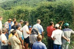 Curso pratico 2005 Santa Maria Jetiba-au