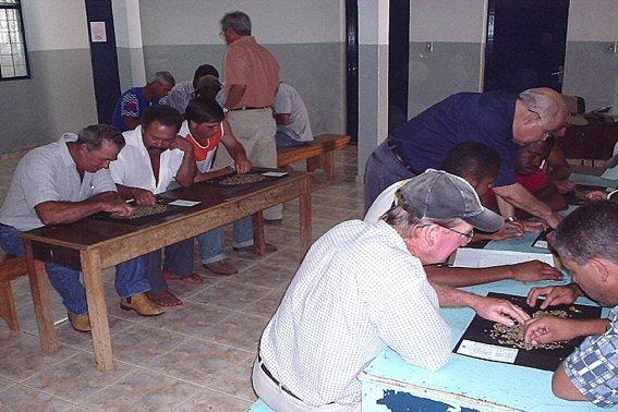 curso pratico 2004  bom sucesso apiaca 05