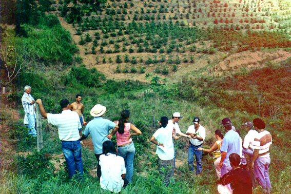 curso pratico 2004 sao romao  guacui 12.