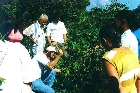 curso pratico 2004 sao romao  guacui 10.