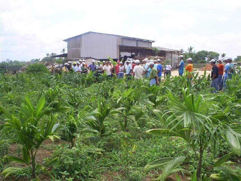 curso prat saomateus2007 09