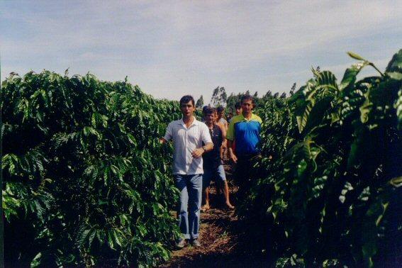curso pratico 2005 linhares rio quartel