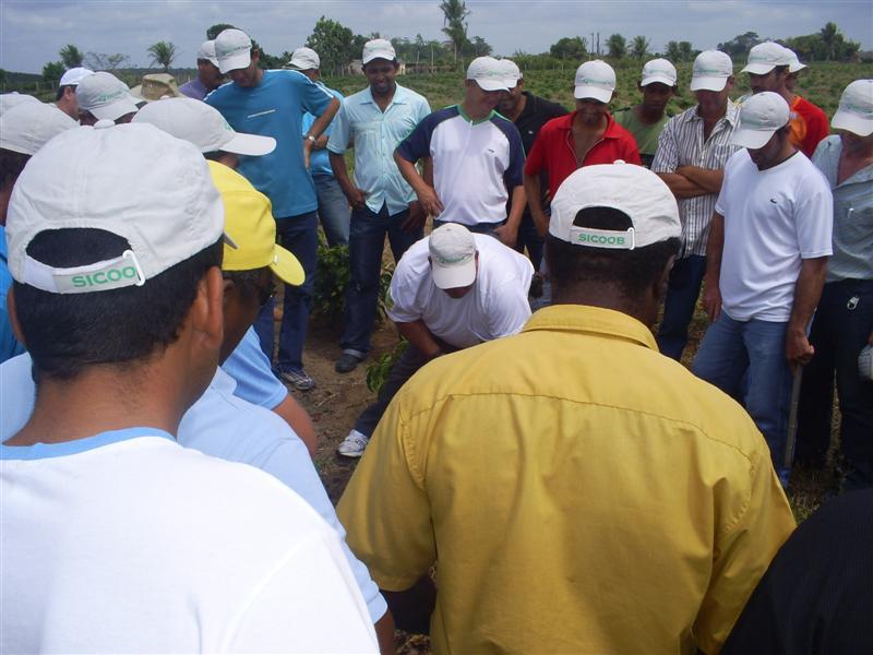 curso prat saomateus2007 05