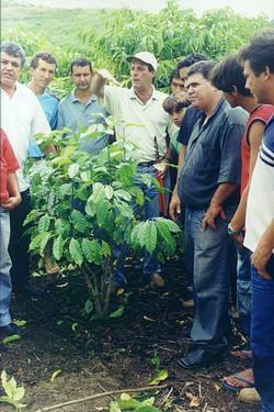 Curso pratico 2005 Agua Doce 17