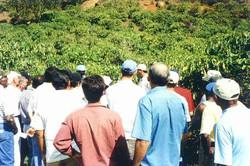 Curso pratico 2003  Sao Gabriel-Muqui 08