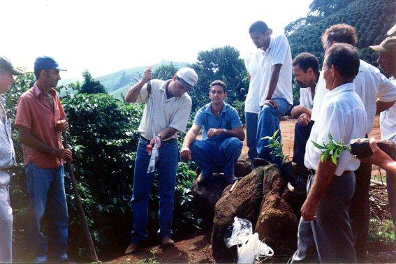 curso pratico 2004  bom sucesso apiaca 08