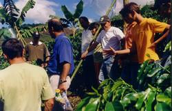 curso pratico 2006 d martins apratic 15