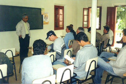 consultoria tec 2005 paraju dmartins 01.