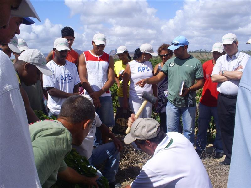 curso prat pinheiro2007 09