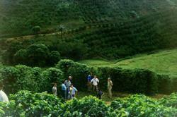 Curso pratico 2005 Paraju DMartins-visita tec 13