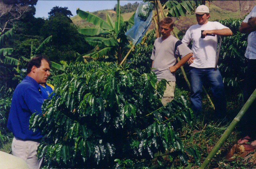 curso pratico 2006 d martins apratic 16