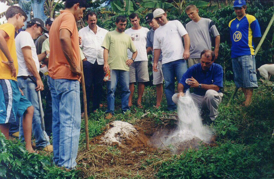 curso pratico 2006 d martins apratic 13