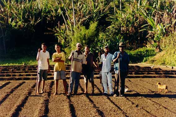 Cursos Ibatiba - 2002-M2 - 05