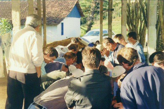 Curso pratico 2005 Santa Maria Jetiba 07