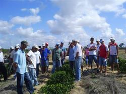 curso prat pinheiro2007 08