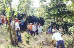 curso pratico 2006 irupi apratic 14