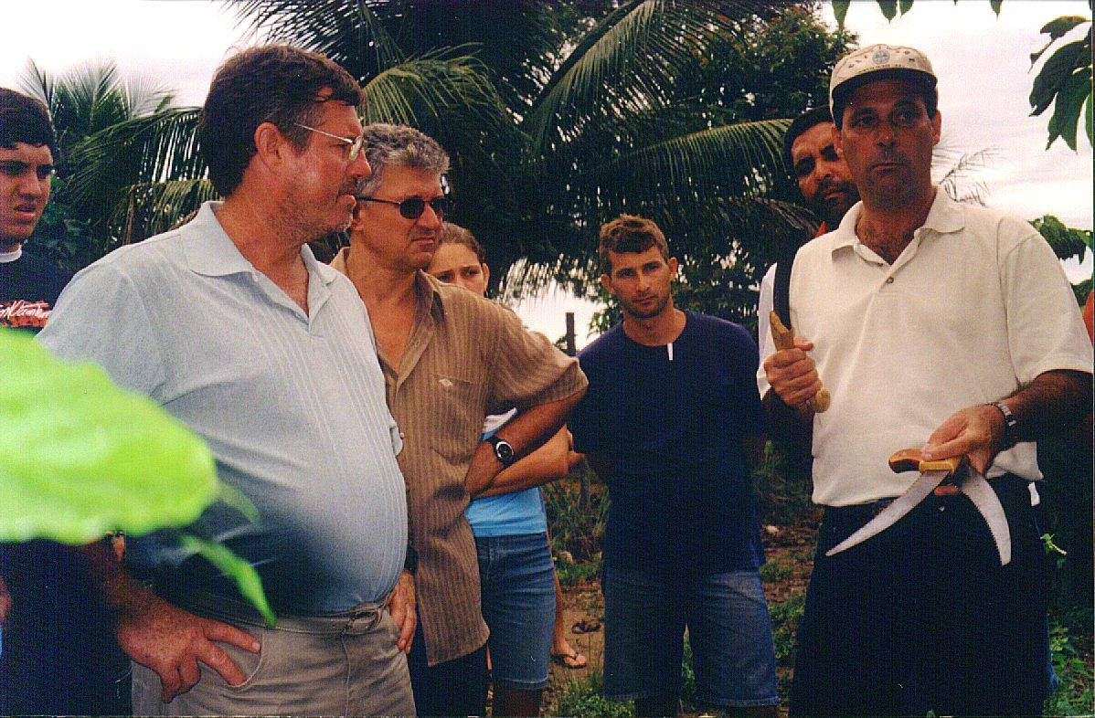 curso pratico 2006 vila valerio apratic