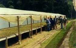 curso pratico 2006 sta maria jetiba18 ap