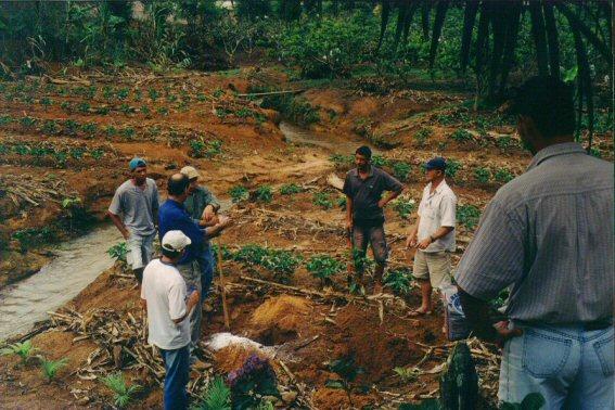 Curso pratico 2005 Paraju DMartins-visita tec 16