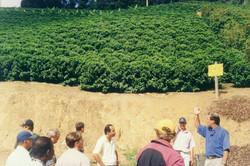 Curso pratico 2005 Paraju DMartins-visita tec 15